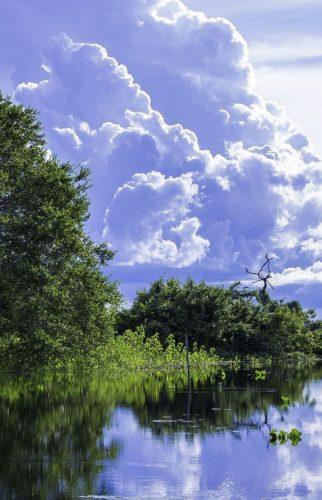 Pantanal - Brésil Aventure